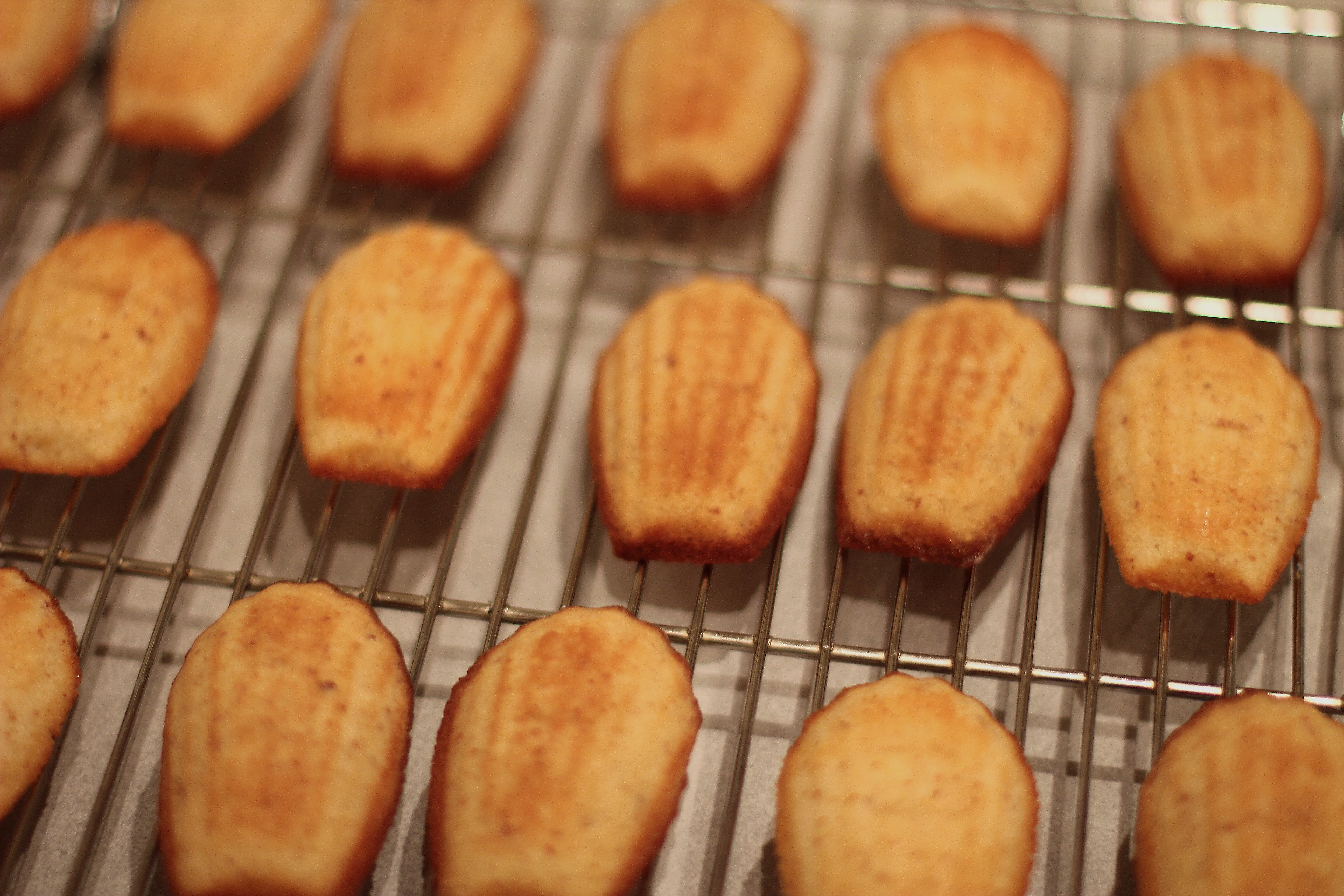 Memorial Day Madeleines | Spoon And Chair